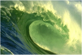 """Dance Alive® offers: """"Ride the Wave"""" Weekly Classes"""