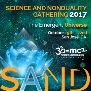 Continuum Movement: An Inquiry into Being - Science and Noduality Conference (SAND 2017)